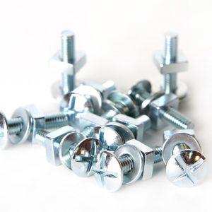 Cast Iron Gutter Screws